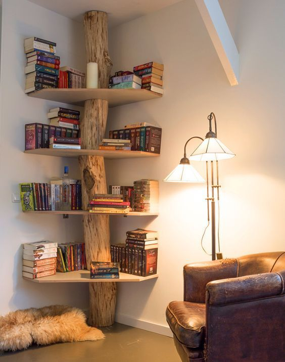 rak buku batang pohon